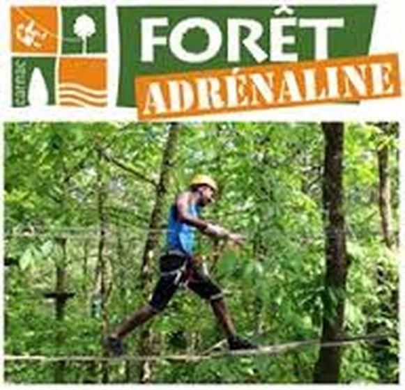 Foret Adrenaline